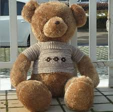 big teddy for s day sst 80cm big new sweater teddy cuddly s
