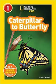 amazon com national geographic readers caterpillar to butterfly
