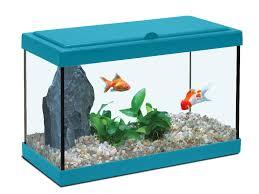 chambre aquarium idees d chambre chambre aquarium dernier design pour l