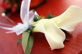calla corsage mini calla corsage a to zinnias weblog