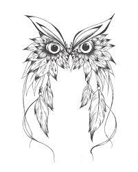 art and illustration owl illustrations