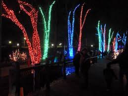 when does the lights at the toledo zoo start toledo zoo lights before christmas ohio this home of mine