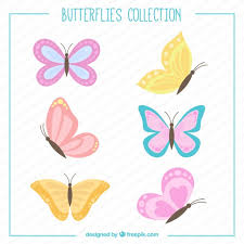 butterfly vectors photos and psd files free