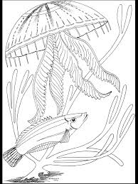 seas and ocean scene coloring pages womanmate com