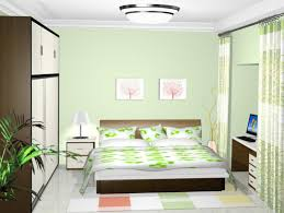 Bedroom Wall Ideas Brilliant 20 Green Walls Living Room Ideas Decorating Inspiration