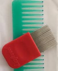 Simply Spray Upholstery Paint Walmart Licefreee Spray Instant Head Lice Treatment 6 0 Fl Oz Walmart Com