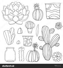 cacti watercolor set succulents home flowers houseplants in save