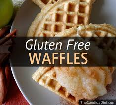 gluten free waffles the candida diet