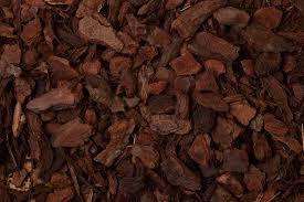 orchid bark pl orchid bark coarse bulk 70 litre bark substrate online