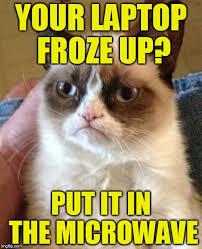 Cat Laptop Meme - grumpy cat meme imgflip