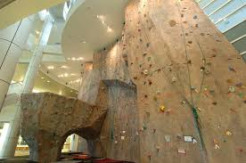 Home Rock Climbing Wall Design Awesome Home Climbing Walls - Home rock climbing wall design