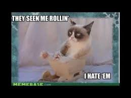 19 Awesome Grumpy Cat Christmas - grumpy cat jingle bells go to hell youtube