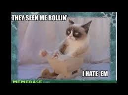Grumpy Cat Snow Meme - grumpy cat jingle bells go to hell youtube