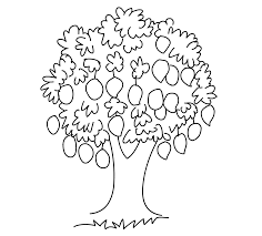 mango tree coloring page clipart free to use clip art resource in