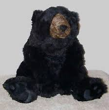 How Much Does A Bear Rug Cost Taxidermied Bear Ebay