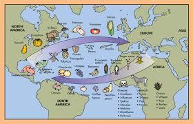 Columbian Exchange Map Giaramita Homework Wordpress Blogs Essay For You