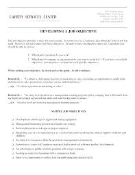 resume exles objective for any position application sle resume objective for any position