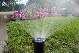 garden sprinkler system philippines home outdoor decoration