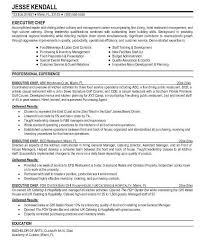 Professional Resume Template Word 2010 Download Professional Resume Template Word 2010