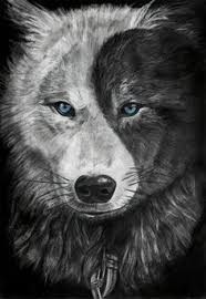 this reminds me of the about the two wolves inside one s