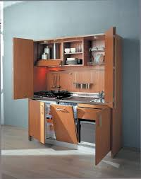 kitchen in a cupboard 19 best kitchen in a cupboard images on pinterest cupboards