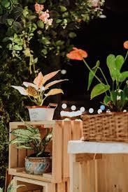 What Is An Urban Garden Doreen And Daryl U0027s Unique Indoor Garden Solemnisation At Picnic
