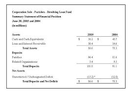Financial Statement Template For Non Profit Organization by Archdiocese Of Boston Management Discussion And Analysis Fy05