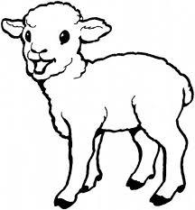 baby born sheep coloring baby born sheep coloring