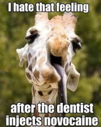 Dental Hygiene Memes - dentist meme top 25 of funny dental pictures
