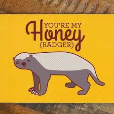 Honey Badger Memes - nerdy love card you re my honey badger internet meme card