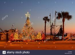 usa florida franklin county apalachicola christmas tree along