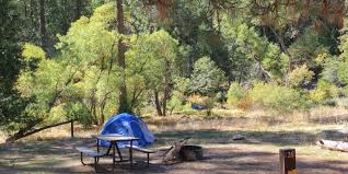 wawona campground yosemite national park camping in california