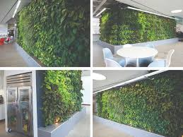 large living wall installation in los angeles woolly pocket
