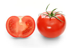 list several plants native to south america tomato wikipedia