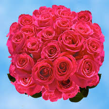 roses online hot pink s day roses online special global