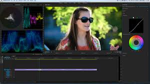 adobe premiere pro zip lumetri plus speedgrade looks digitalfilms