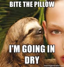 Anteater Meme Generator - sloth meme google search funny pictures pinterest sloth