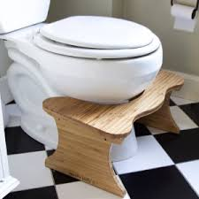 Pedestal Squat Toilet Bathroom Design Awesome Toiletstool And Examples Of Family Choice