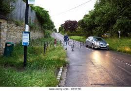 bedlington terrier seattle bus dog stock photos u0026 bus dog stock images alamy