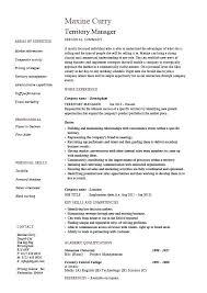 executive resume sles executive resume exle
