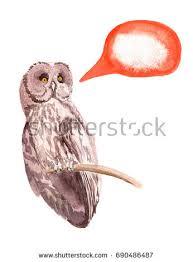 watercolor illustration owl on wright paper stock illustration