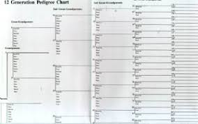 charts u0026 forms family tree wall charts plus free census