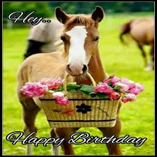 Horse Birthday Meme - happy birthday horse picture mne vse pohuj