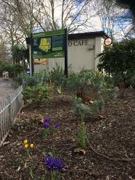 vauxhall gardens today news friends of vauxhall park an award winning park in central