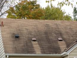 Insulation Blanket Under Metal Roof by Zinc Strips Prevent Moss Growth On Roofs