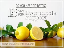 do you need to detox 15 signs your liver needs support body