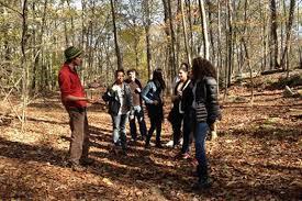 Urban Garden Woodland Hills - woodland ecology research mentorship wave hill new york