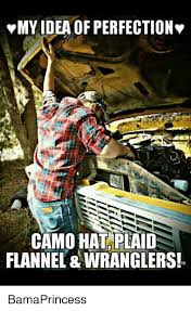 Meme Wrangler - vmy ideaof perfection camo hat plaid flannel wranglers by