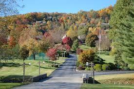 Asheville Nc Botanical Garden by 15 Bees Mountain Road In Asheville North Carolina 28804 Mls