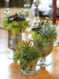 wedding flowers on a budget friday five wedding flowers on a budget succulent centerpieces